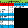AJCC2018 出走予定馬:ショウナンバッハ