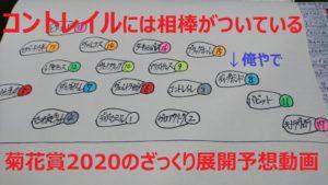 コントレイル距離を克服し無敗三冠達成なるか?@菊花賞2020のざっくり展開予想動画!